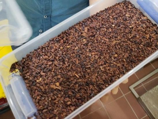 Cocoa nibs at the SERO chocolate production facility