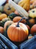 pumpkin - photo by Aaron Burden on unsplash.com