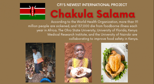 Chakula Salama: a Risk-Based Approach To Reducing Foodborne Disease and Increasing Production of Safe Foods in Kenya