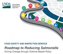 FSIS Salmonella Road Map