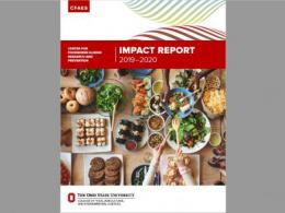 Impact Report Front Cover